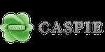 CASPIE_150x75