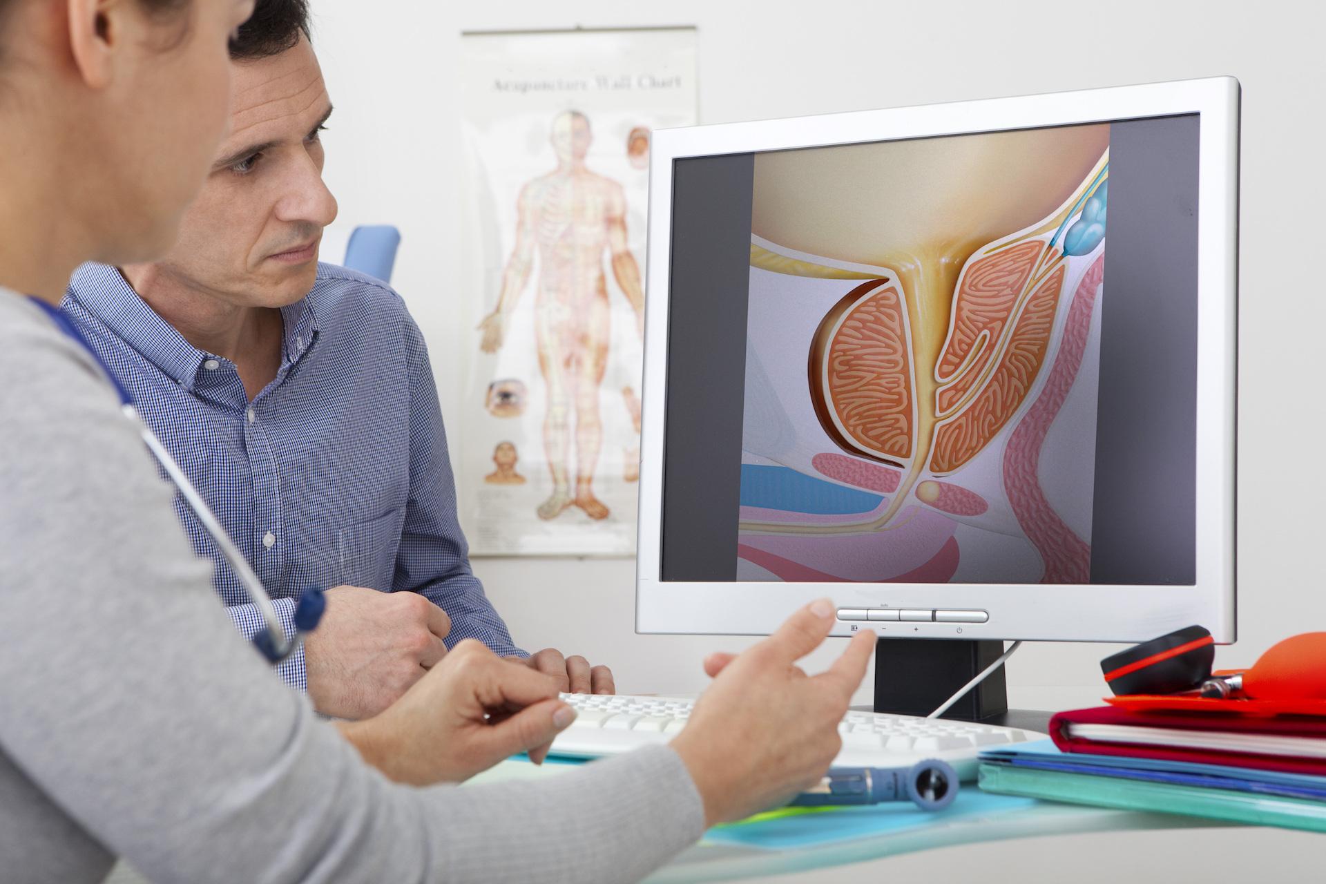 Urologia Protos